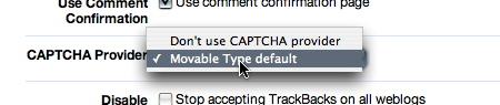 CAPTCHA 認証の設定