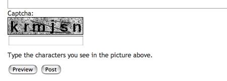 CAPTCHA 認証フォーム