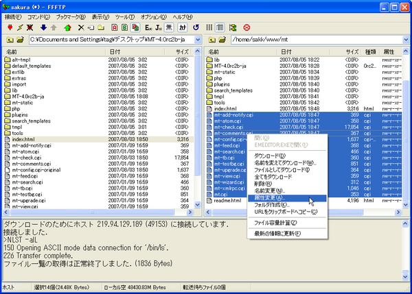 sakura-022.png